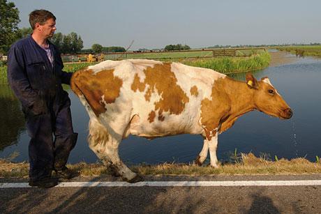 Tentoonstelling stadsmuseum Woerden: De andere boerderij
